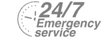 24/7 Emergency Service Pest Control in Hampton Hill, Hampton, TW12. Call Now! 020 8166 9746
